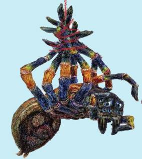 tarantula-1000-post